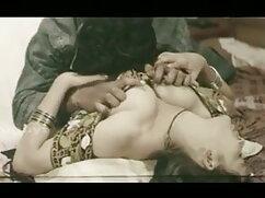 पोर्नस्टारप्लायटिन - तारा हॉलिडे क्रिसमस सेक्सी पिक्चर फुल मूवी बीजे