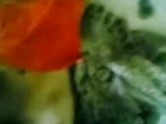बस्टी प्लंपर एक अजनबी के लिए अपने पैर फैलाता सेक्सी फिल्म वीडियो फुल है