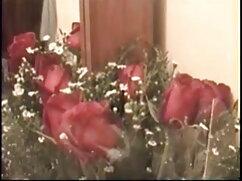 लिली सेक्सी फुल मूवी हिंदी वीडियो ANAL